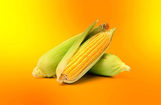 اهمیت زیرساخت کشاورزی و آسیبپذیریهای تجهیزات تولیدکنندگان