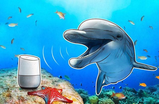حملهی دلفینی: دستیارهای صوتی چیزهایی را میشنوند که ما نمیشنویم
