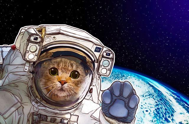 اینترنت در فضا: آیا روی مریخ خبری از نِت هست؟!